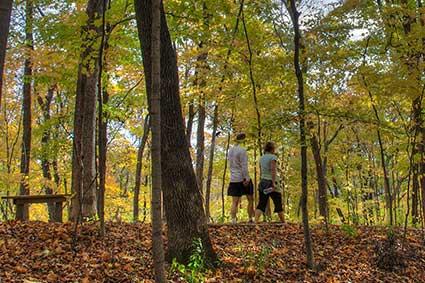 fciwomenswrestling.com article, homeofpurdue.com photo