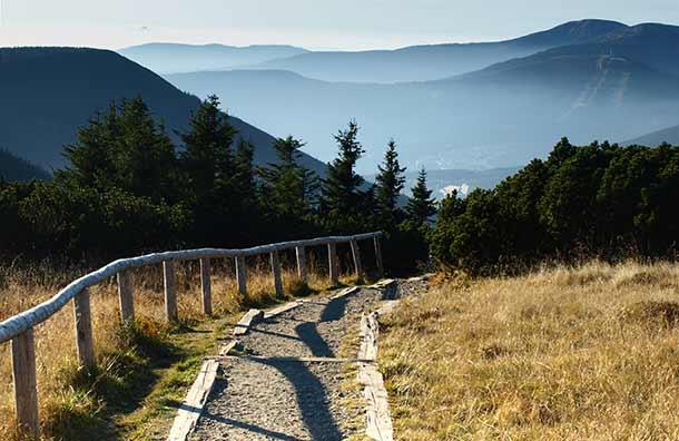 fciwomenswrestling.com article, independenttraveler.com photo