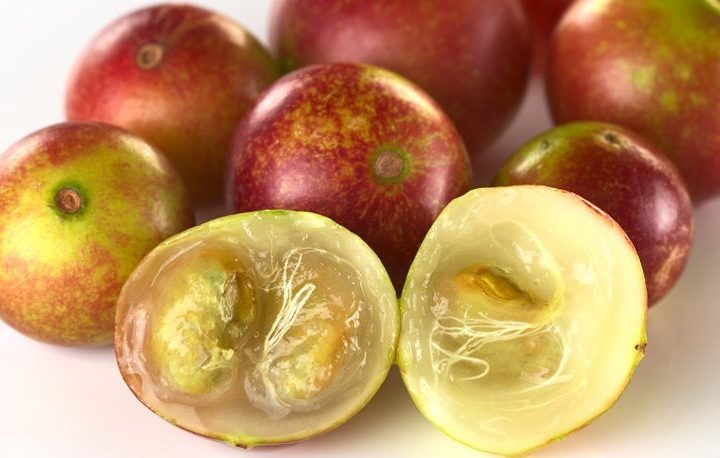 Camu camu Fruit, Uniquely Beneficial, The Magic Health Bullet?